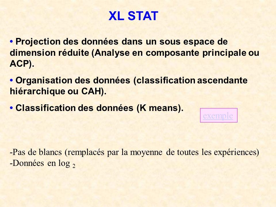 XL STAT • Projection des données dans un sous espace de dimension réduite (Analyse en composante principale ou ACP).