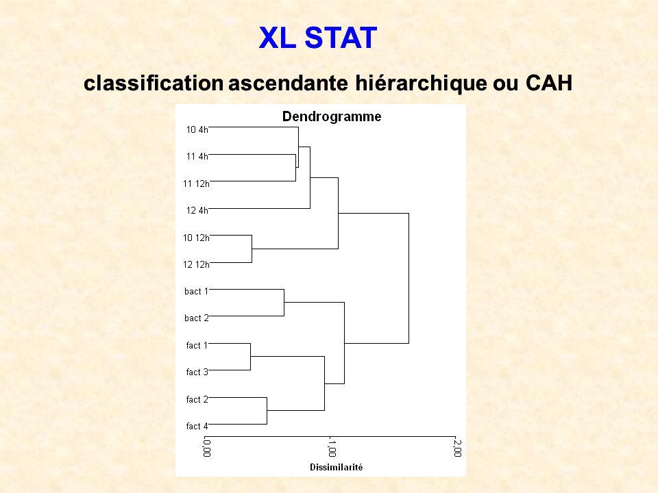 XL STAT XL STAT classification ascendante hiérarchique ou CAH