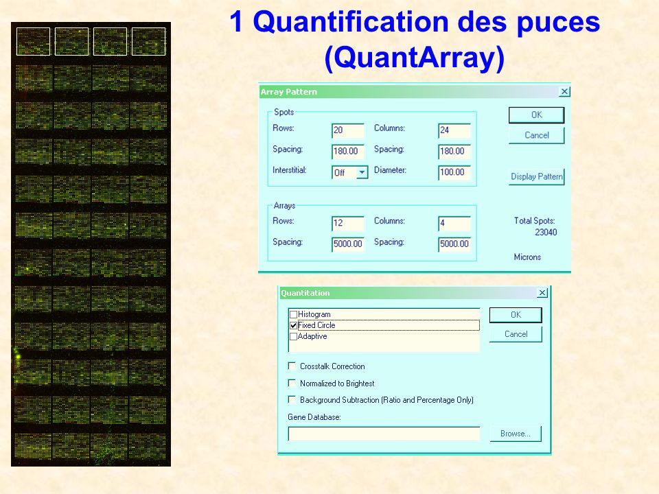 1 Quantification des puces (QuantArray)