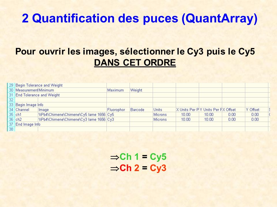 2 Quantification des puces (QuantArray)