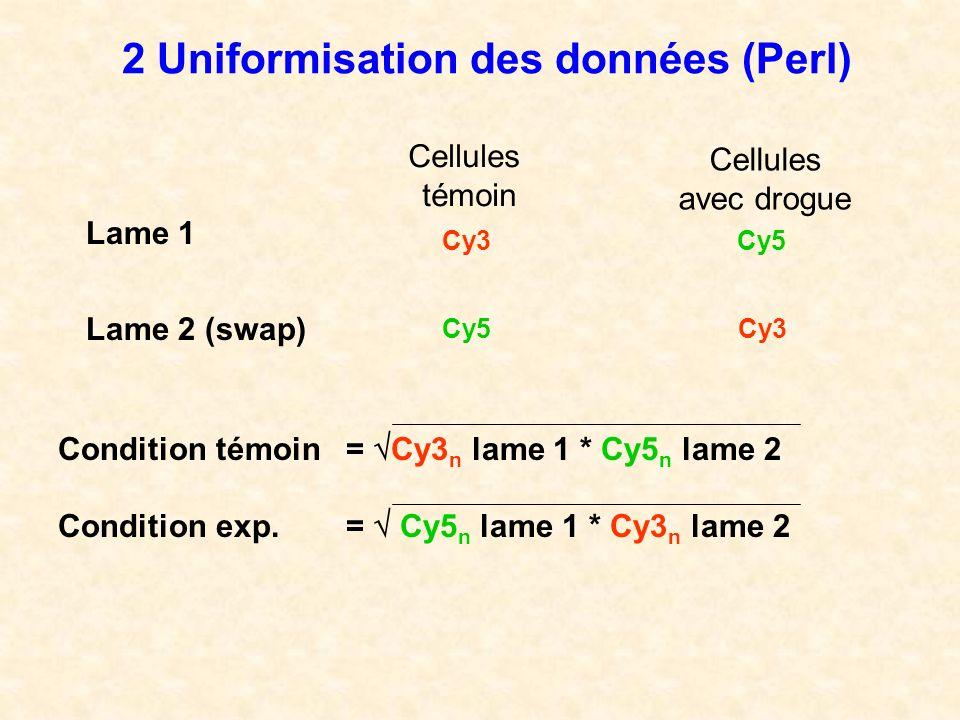 2 Uniformisation des données (Perl)