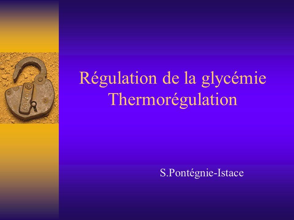 Régulation de la glycémie Thermorégulation - ppt video online ...