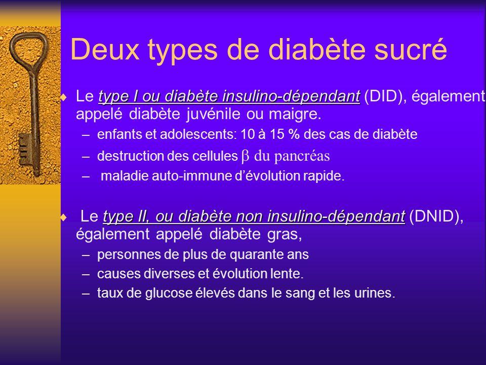 Deux types de diabète sucré