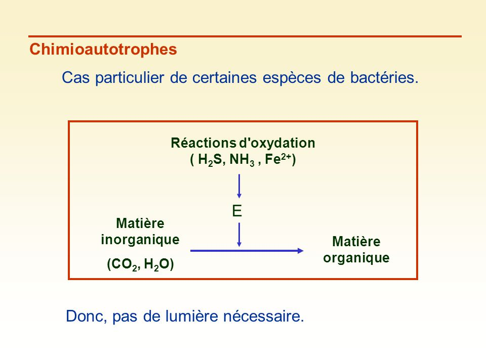 Réactions d oxydation ( H2S, NH3 , Fe2+)