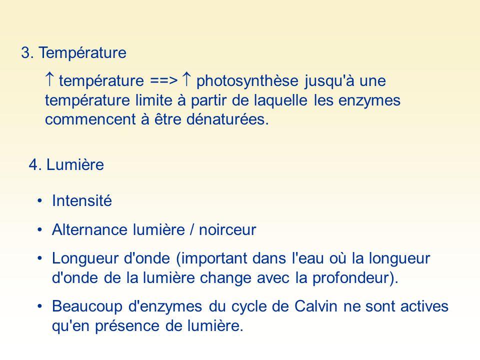 3. Température  température ==>  photosynthèse jusqu à une température limite à partir de laquelle les enzymes commencent à être dénaturées.