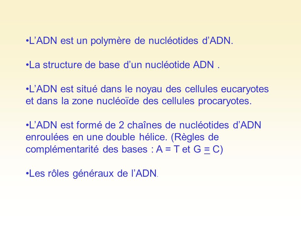 L'ADN est un polymère de nucléotides d'ADN.