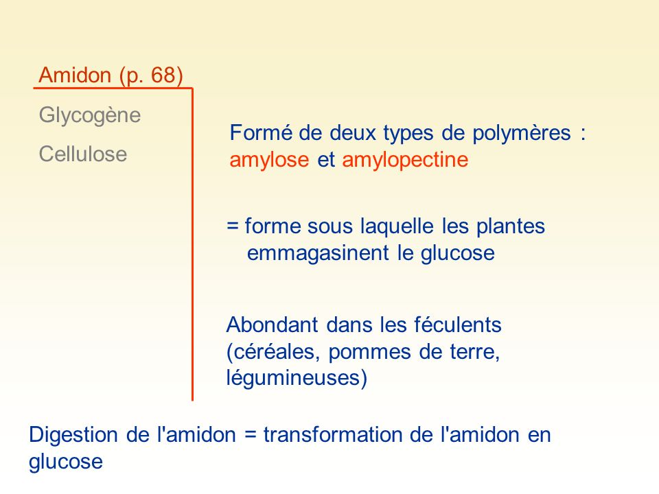 Amidon (p. 68) Glycogène. Cellulose. Formé de deux types de polymères : amylose et amylopectine.