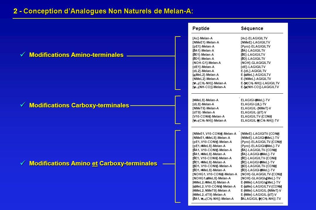  2 - Conception d'Analogues Non Naturels de Melan-A: