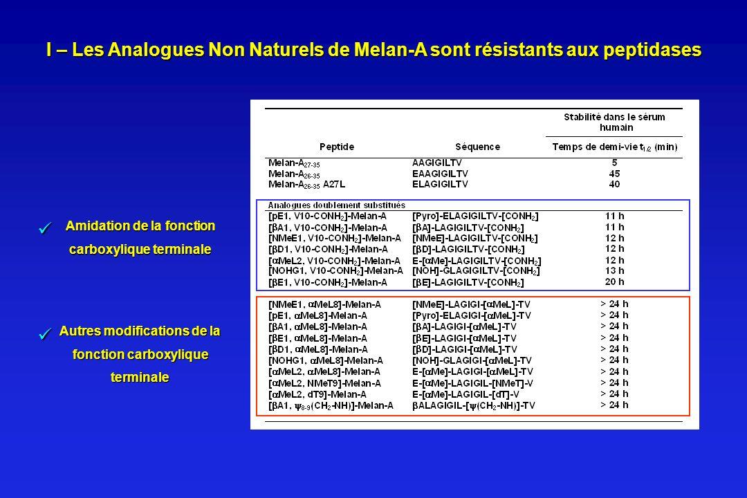 I – Les Analogues Non Naturels de Melan-A sont résistants aux peptidases