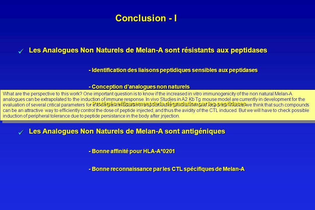 Conclusion - I - Identification des liaisons peptidiques sensibles aux peptidases. - Conception d'analogues non naturels.