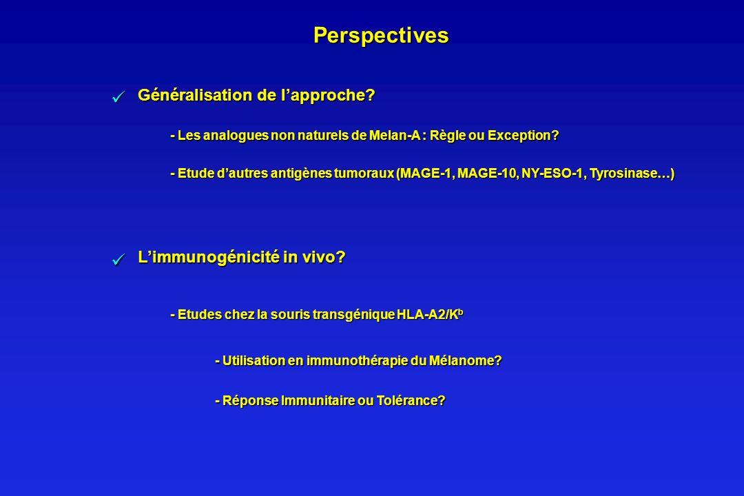 Perspectives   Généralisation de l'approche