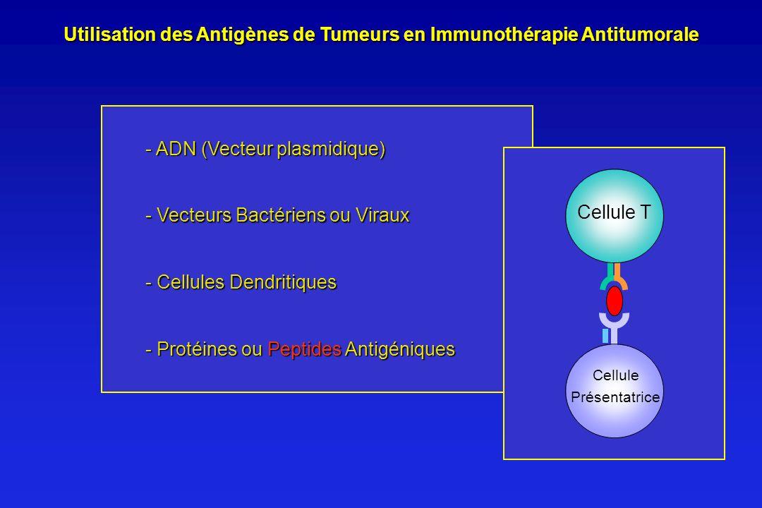 Utilisation des Antigènes de Tumeurs en Immunothérapie Antitumorale
