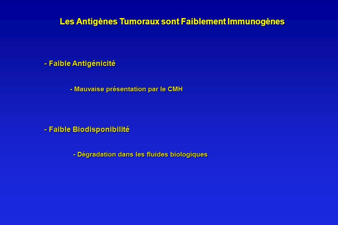 Les Antigènes Tumoraux sont Faiblement Immunogènes