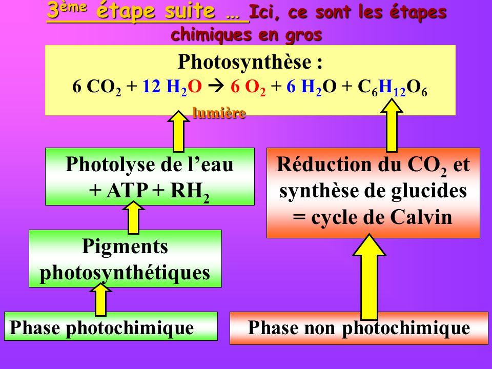 3ème étape suite … Ici, ce sont les étapes chimiques en gros