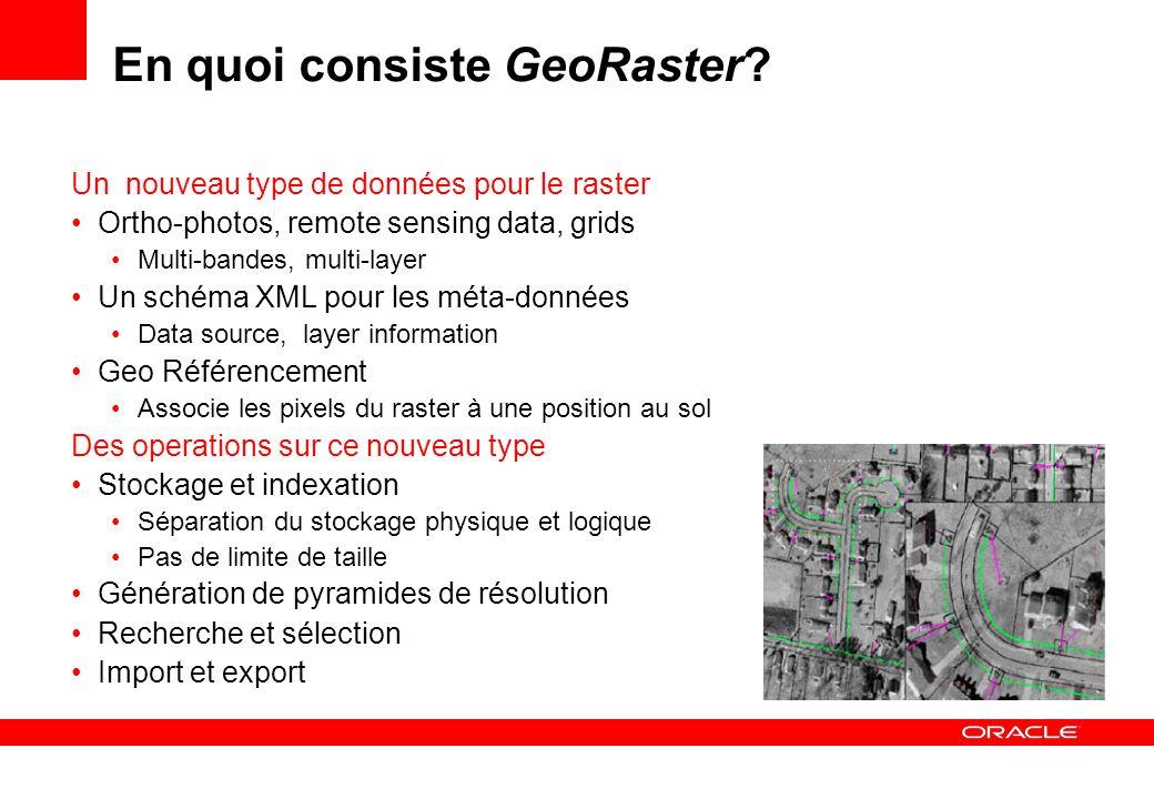 En quoi consiste GeoRaster