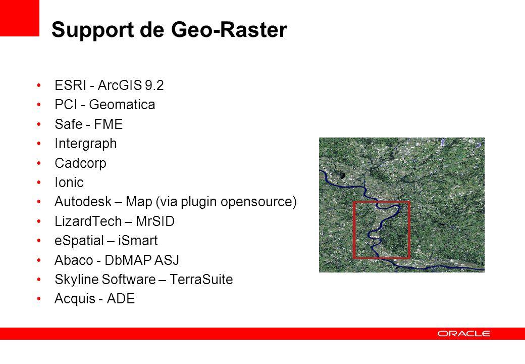 Support de Geo-Raster ESRI - ArcGIS 9.2 PCI - Geomatica Safe - FME