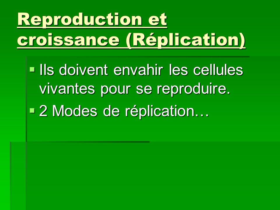Reproduction et croissance (Réplication)
