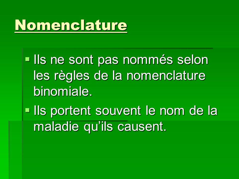Nomenclature Ils ne sont pas nommés selon les règles de la nomenclature binomiale.