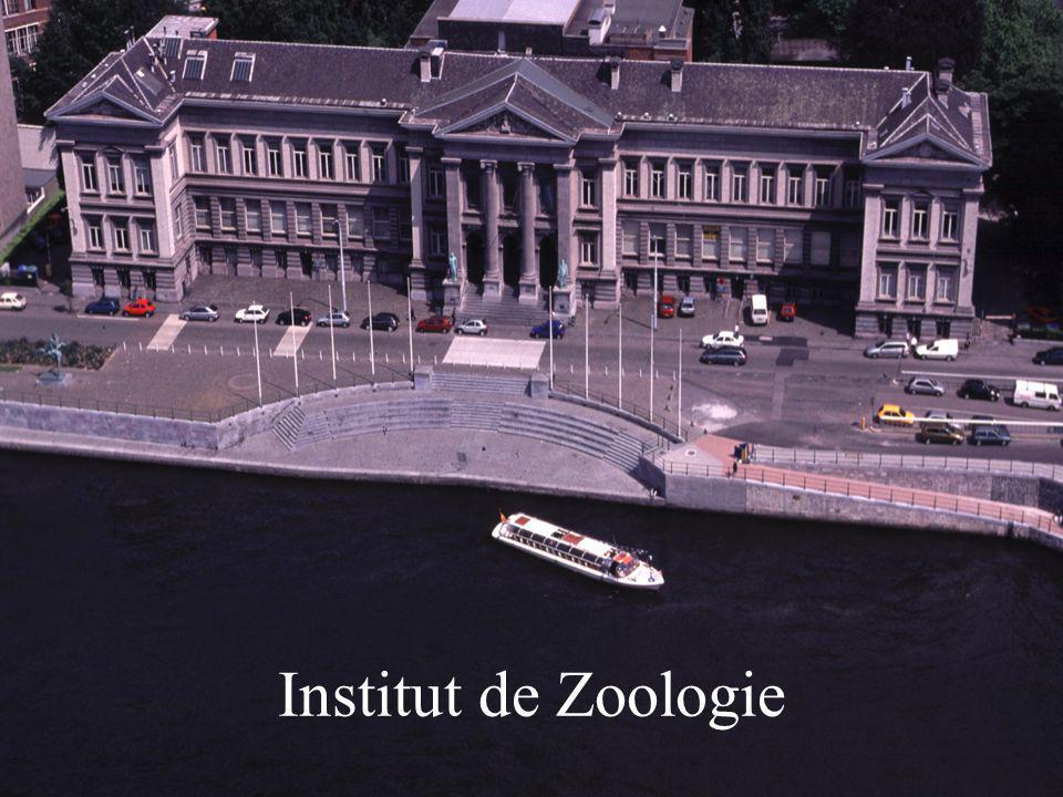 Institut de Zoologie
