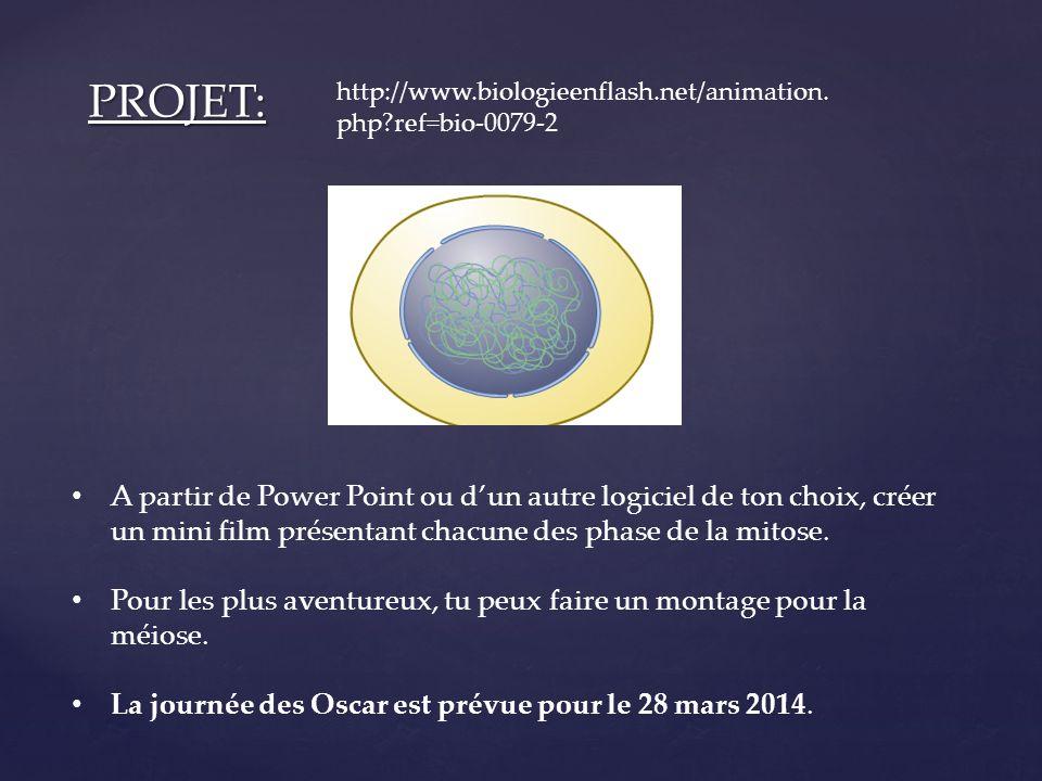 PROJET: http://www.biologieenflash.net/animation.php ref=bio-0079-2.