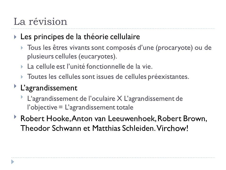 La révision Les principes de la théorie cellulaire L'agrandissement
