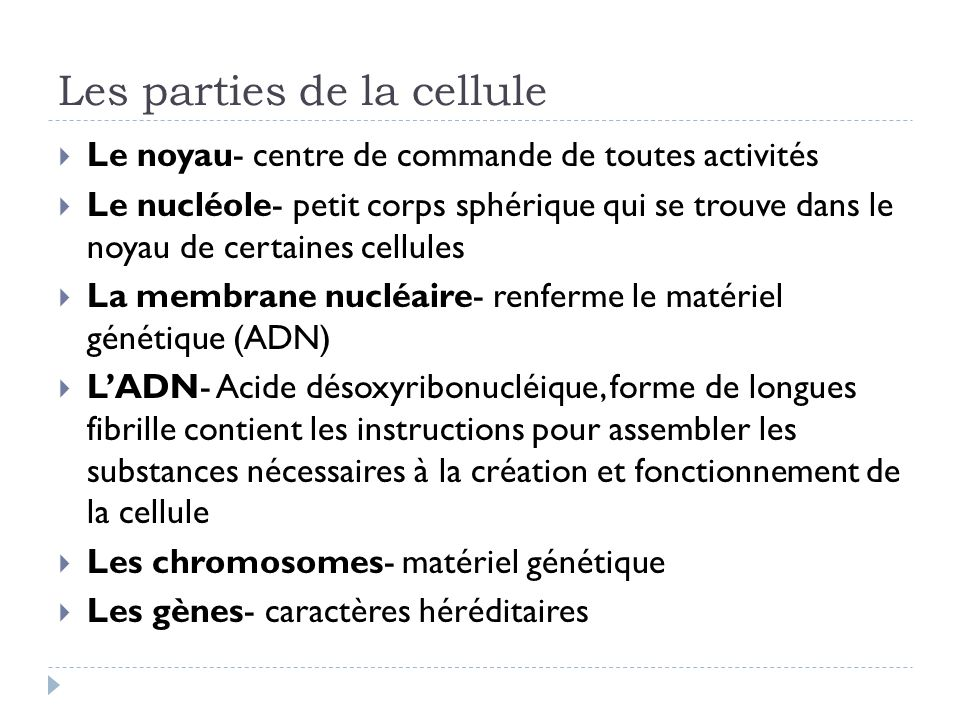 Les parties de la cellule