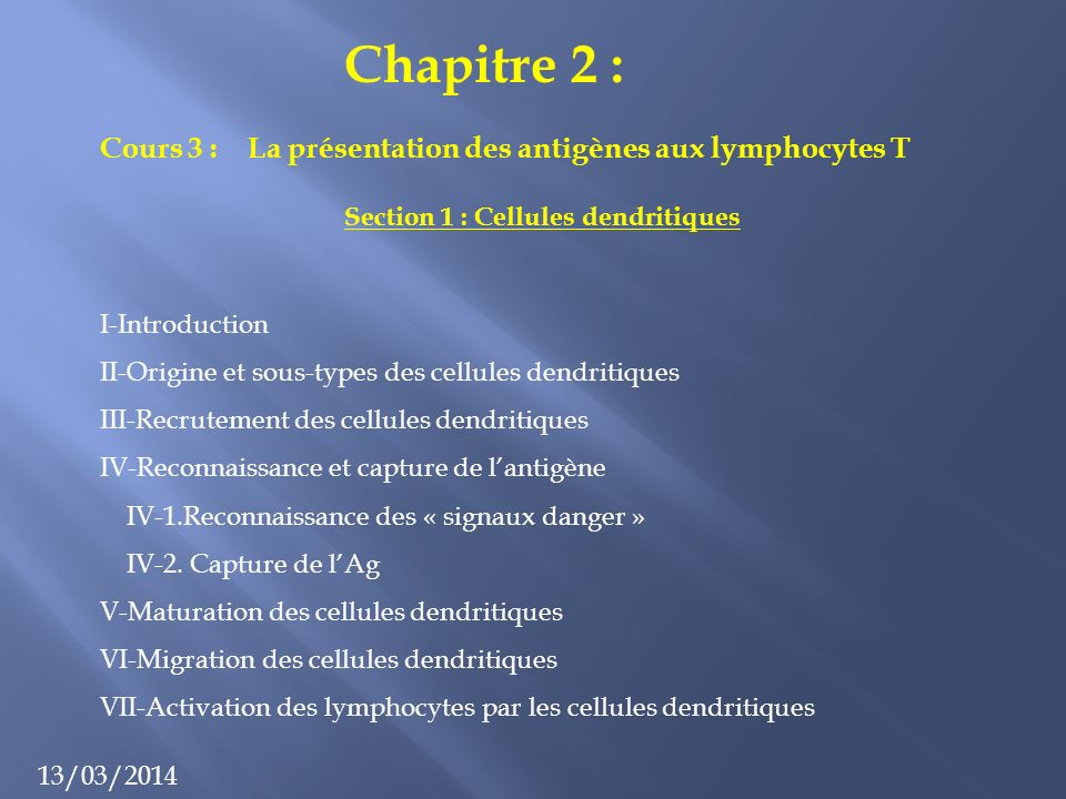 Section 1 : Cellules dendritiques