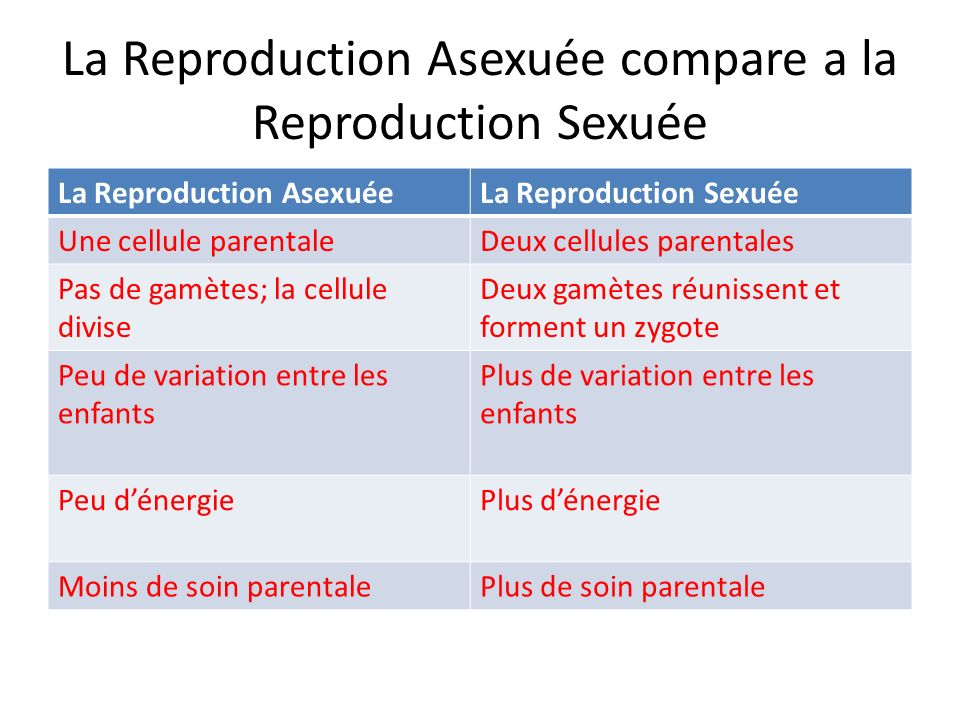 La Reproduction Asexuée compare a la Reproduction Sexuée