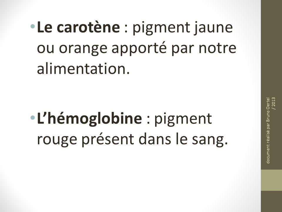 Le carotène : pigment jaune ou orange apporté par notre alimentation.
