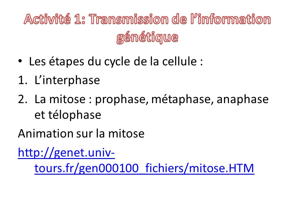 Activité 1: Transmission de l'information génétique