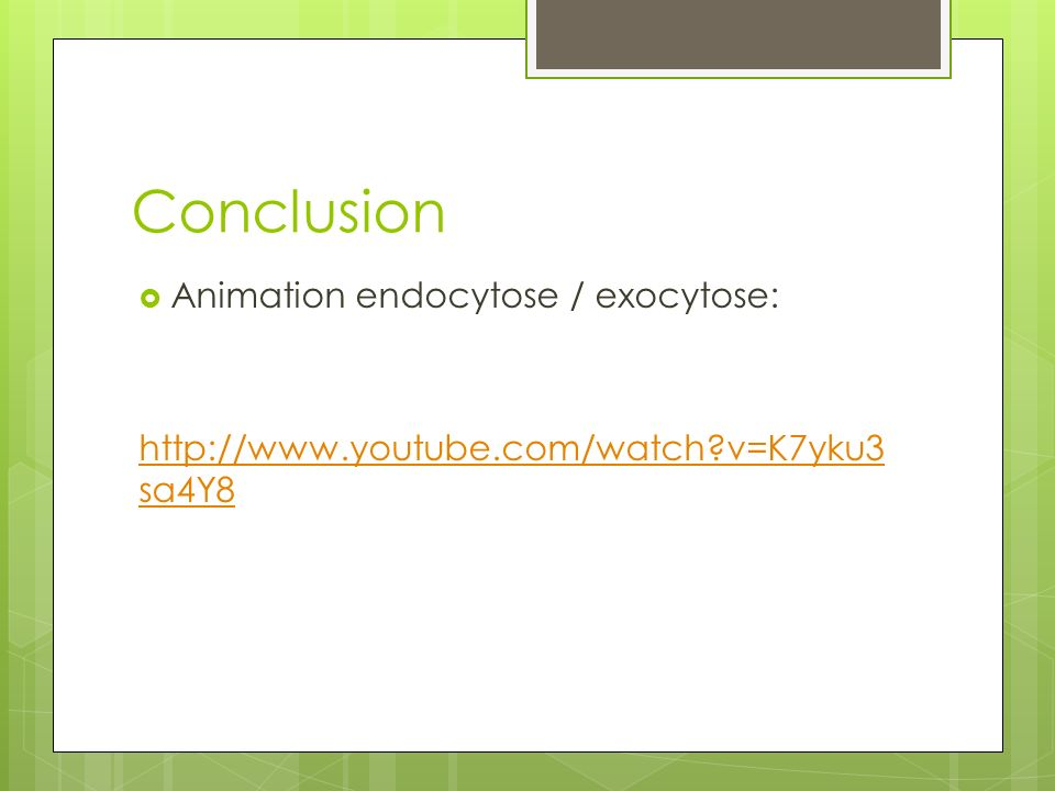Conclusion Animation endocytose / exocytose: