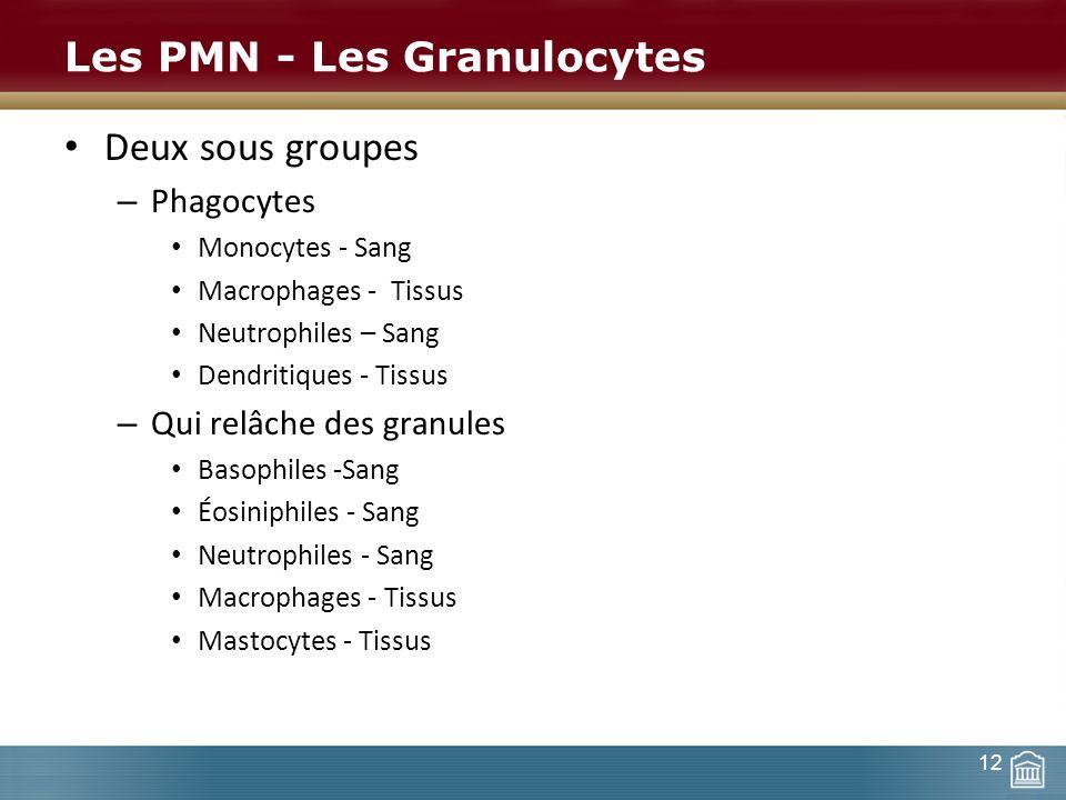 Les PMN - Les Granulocytes