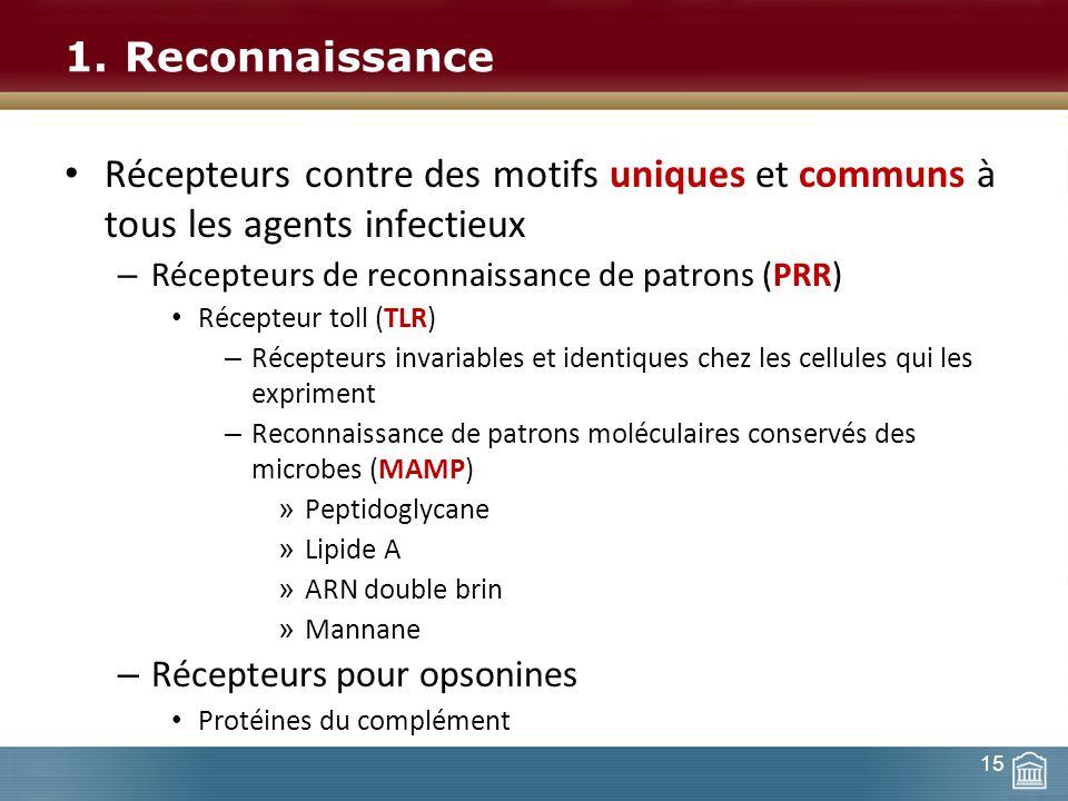 Reconnaissance Récepteurs contre des motifs uniques et communs à tous les agents infectieux. Récepteurs de reconnaissance de patrons (PRR)