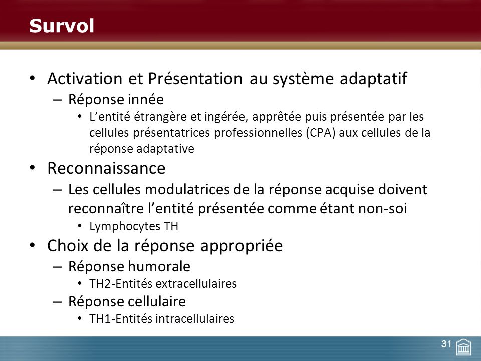 Activation et Présentation au système adaptatif