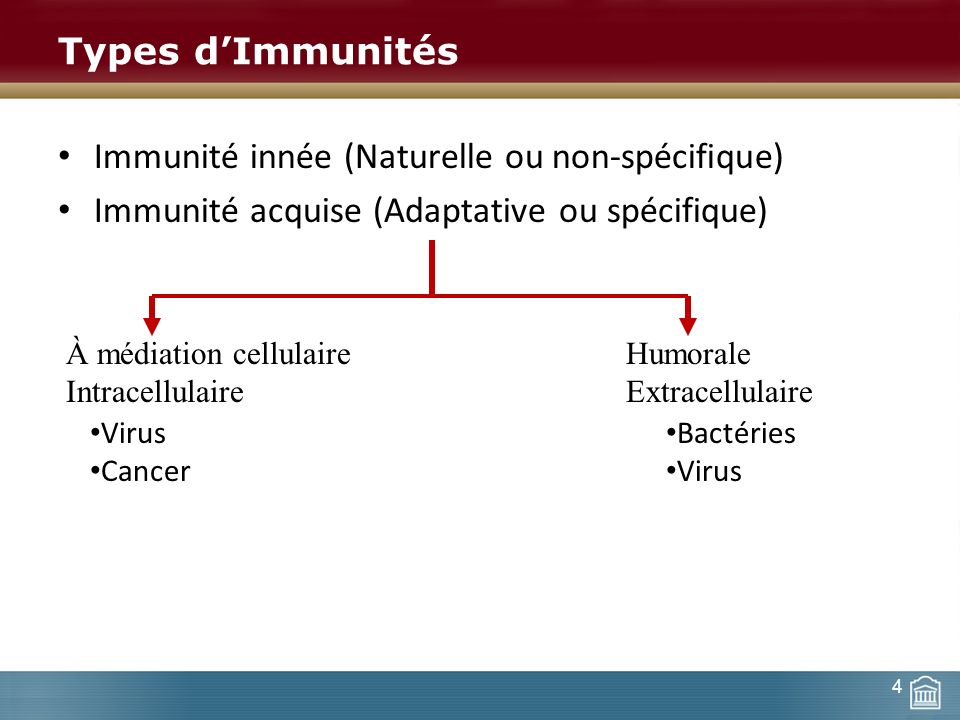 Immunité innée (Naturelle ou non-spécifique)