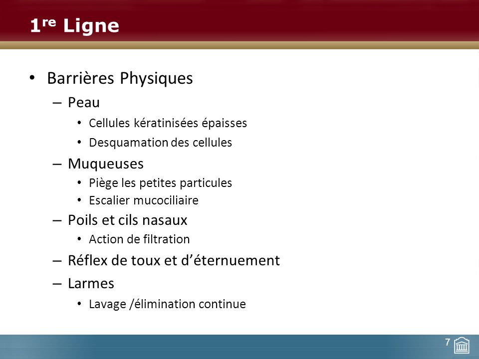 1re Ligne Barrières Physiques Peau Muqueuses Poils et cils nasaux