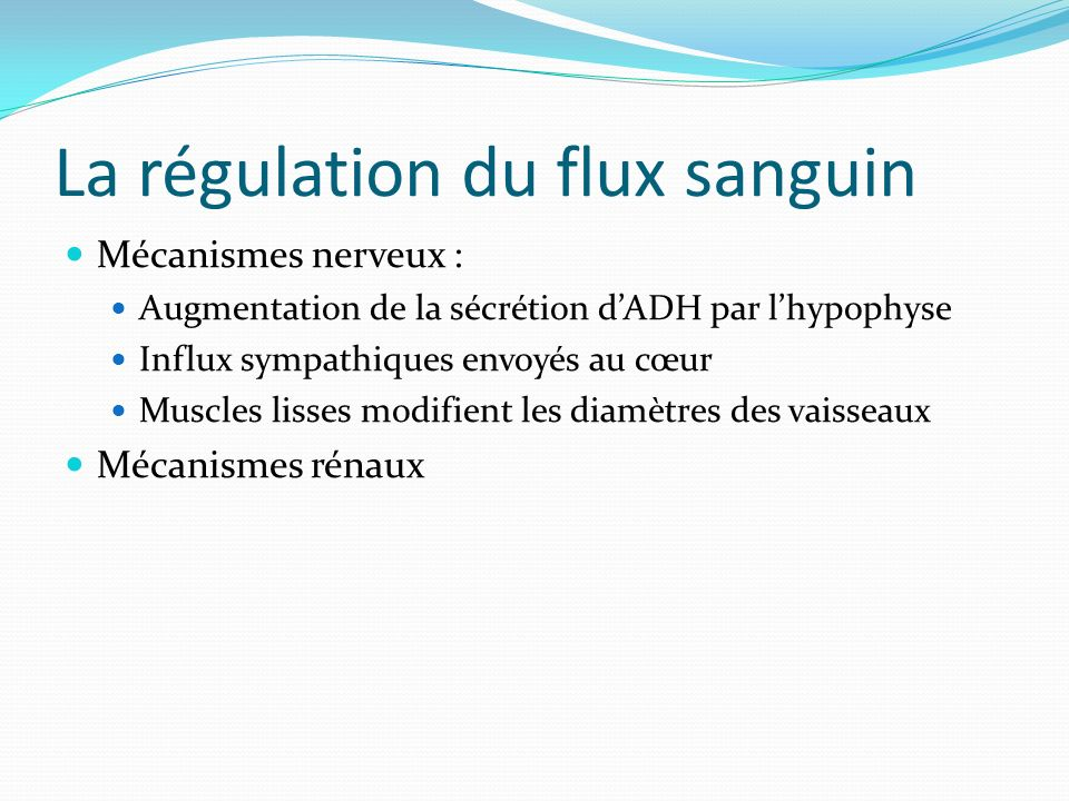 La régulation du flux sanguin