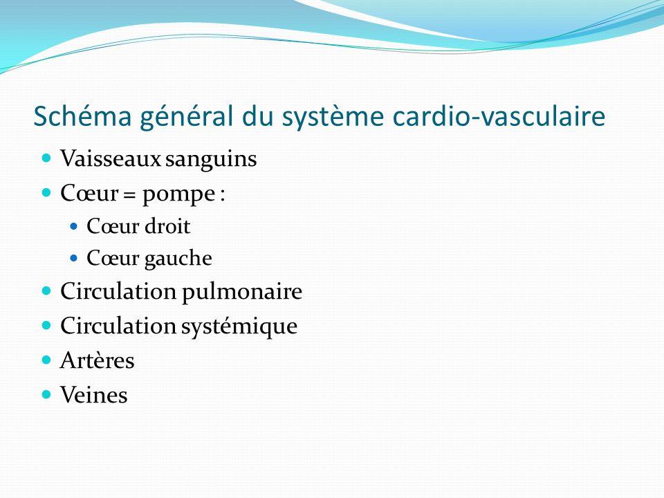 Schéma général du système cardio-vasculaire