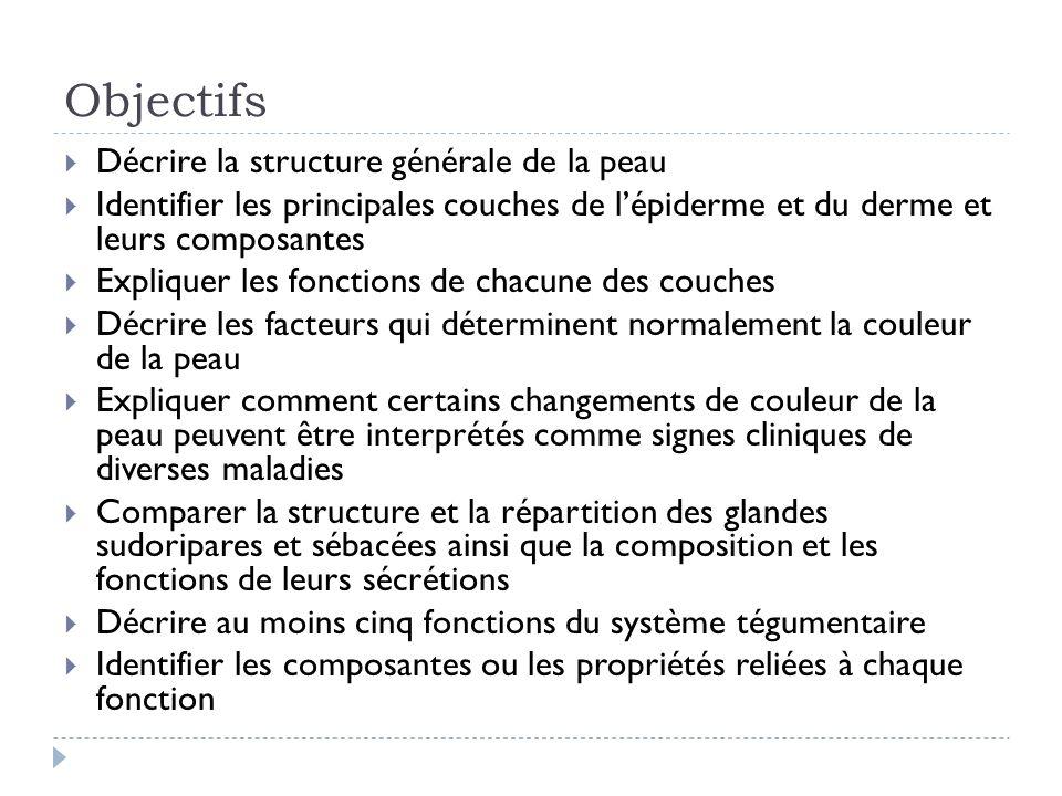 Objectifs Décrire la structure générale de la peau