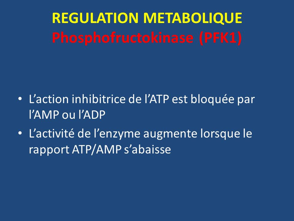 REGULATION METABOLIQUE Phosphofructokinase (PFK1)