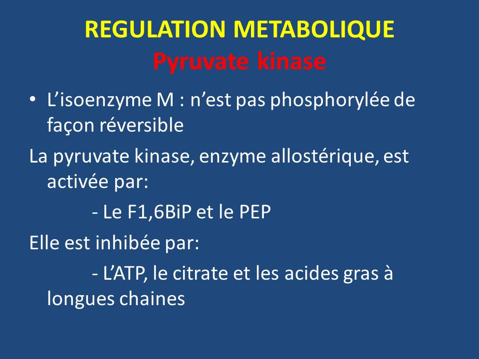 REGULATION METABOLIQUE Pyruvate kinase
