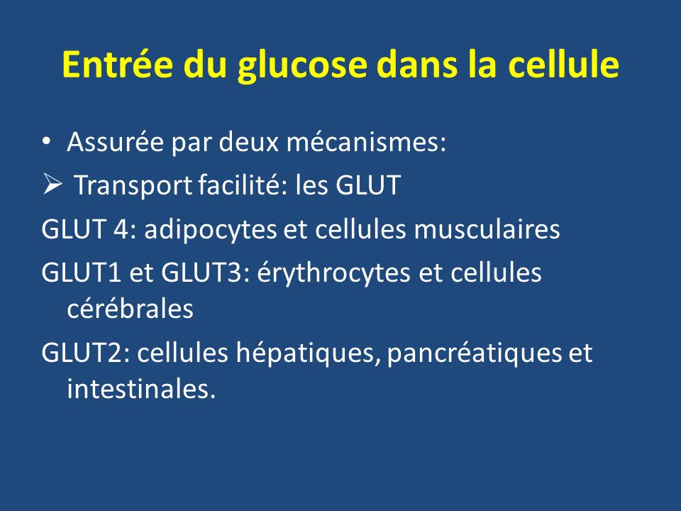 Entrée du glucose dans la cellule