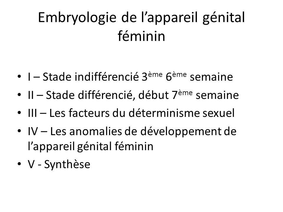 Embryologie de l'appareil génital féminin