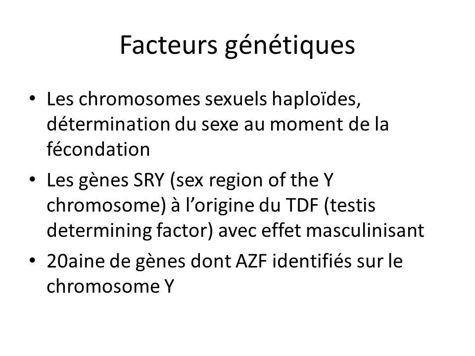 Facteurs génétiques Les chromosomes sexuels haploïdes, détermination du sexe au moment de la fécondation.