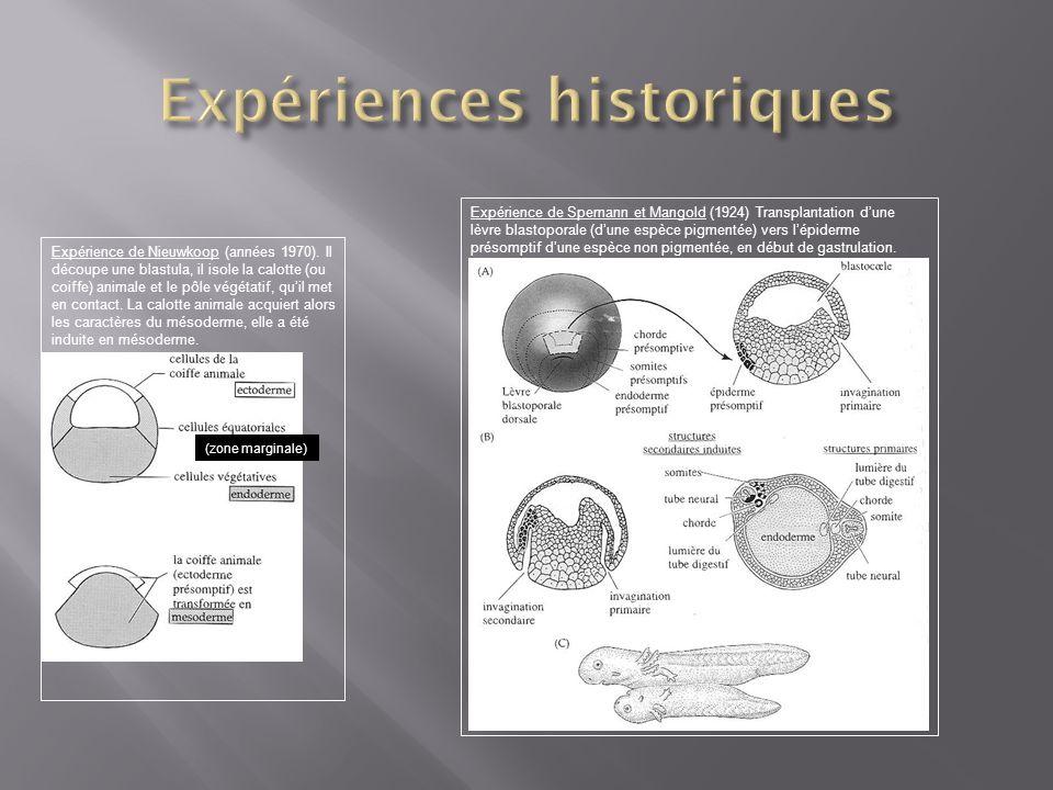 Expériences historiques