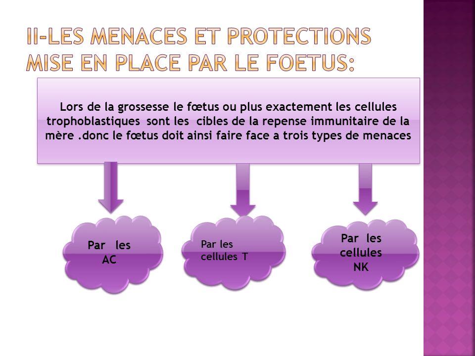 II-LES MENACES ET PROTECTIONS MISE EN PLACE PAR LE FOETUS: