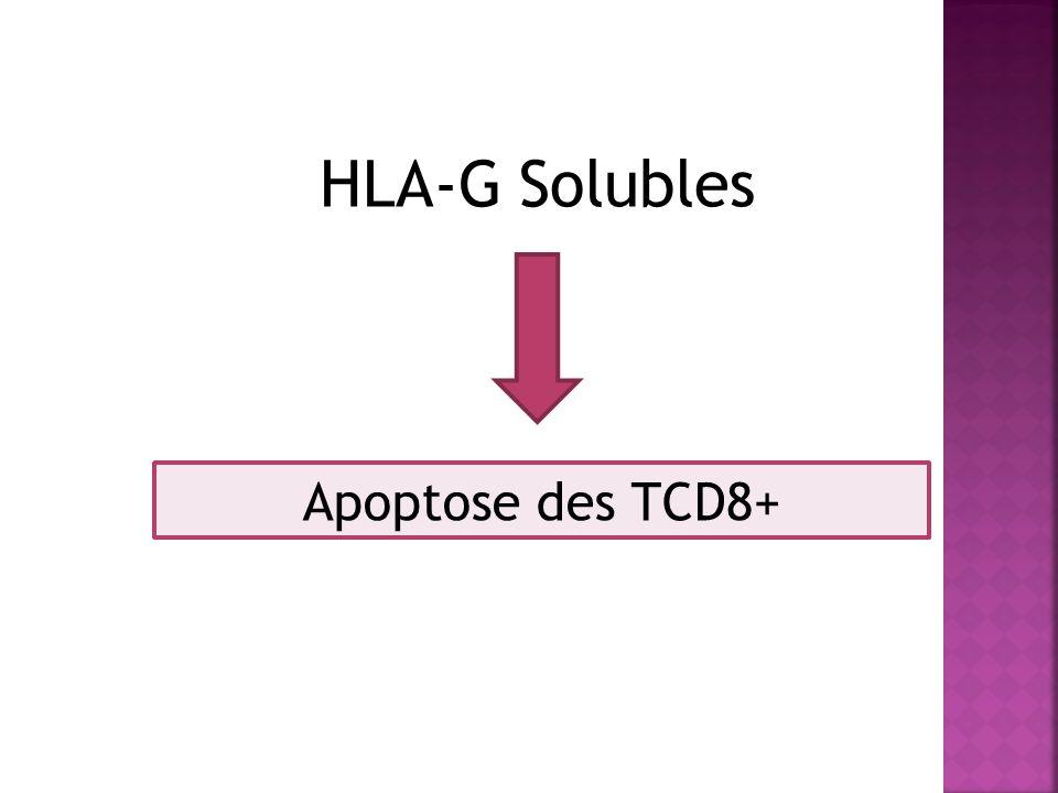 HLA-G Solubles Apoptose des TCD8+