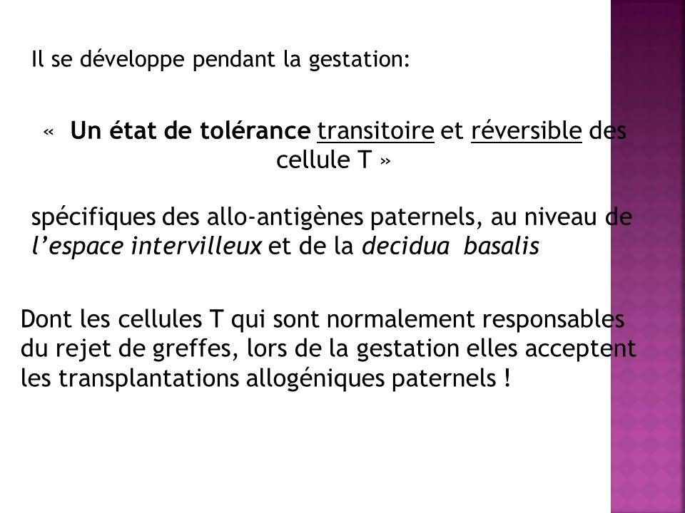 « Un état de tolérance transitoire et réversible des cellule T »