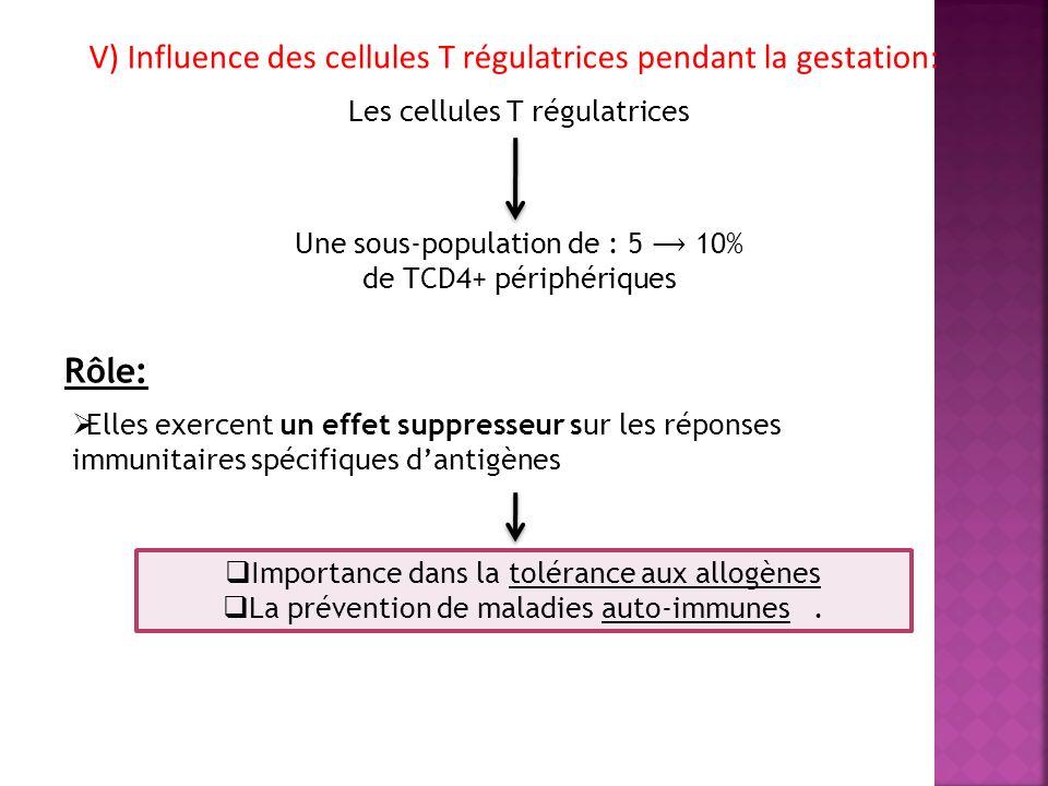 V) Influence des cellules T régulatrices pendant la gestation: