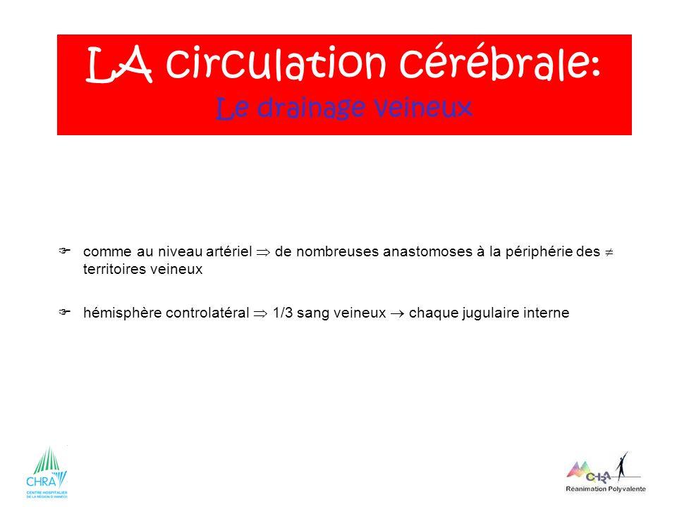 LA circulation cérébrale: